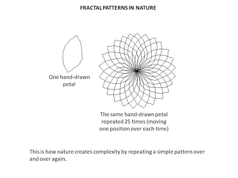 Fractal nature1.jpg