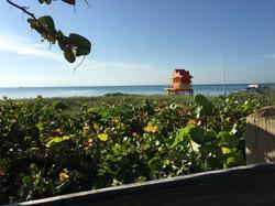 7am miami beach