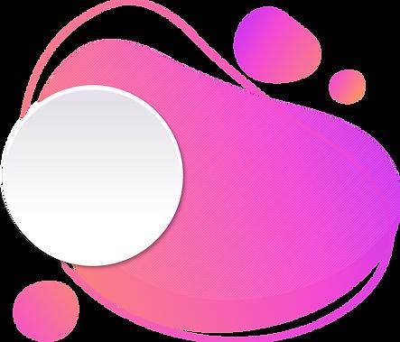 Wix Web Expert Team Member Design Expert