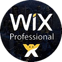 Professional Wix Expert Agency or Team