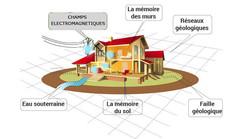 cafe-sante-géobiologie-santé-habitat-res