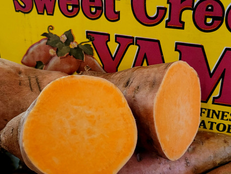 I Yam A Sweet Potato
