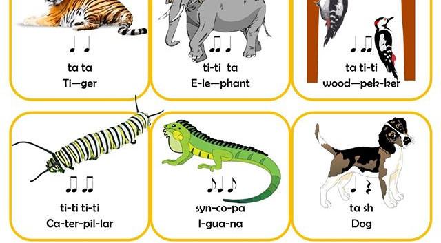 Animal Rhythms