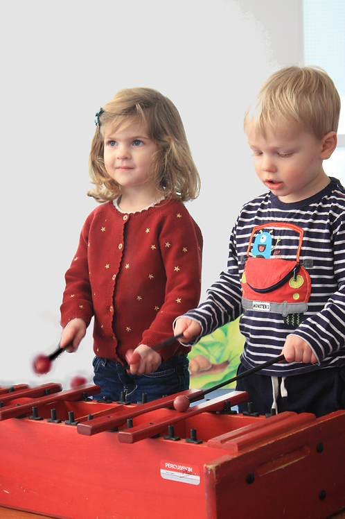 Wed 10:00 Toddler & Pre-Schooler/ 2-4yrs Online Music Class