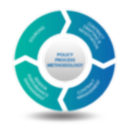 JDI Consuting Process and Methodology