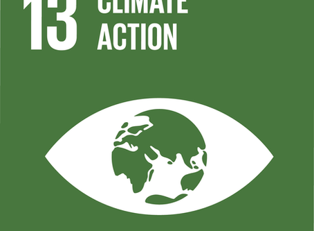 European Sustainable Development Week - Climate Action