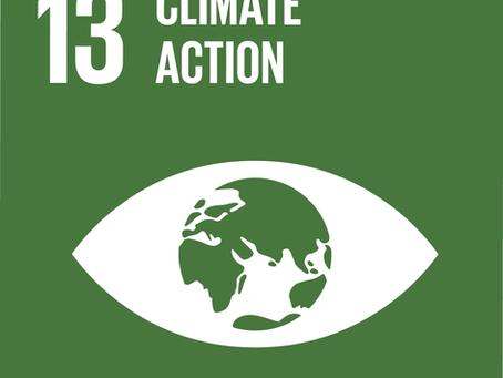 European Sustainable Development Week - Climate Action