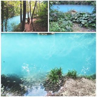 Parco Fluviale Colle di Val d'Elsa33,2 km 36min