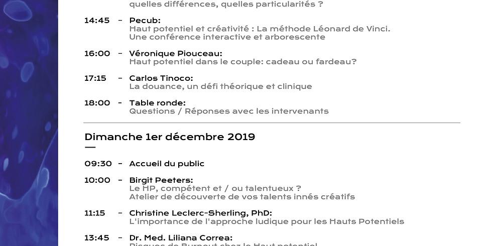 2019-Week-end d'échanges et de conférences autour du HPI