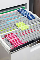 Organized files image.jpg