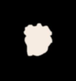 regije2-bez-24.png