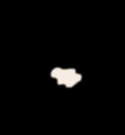 regije2-bez-25.png
