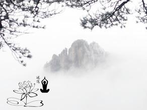 L'été sera frais dans les Monts de Huangshan!