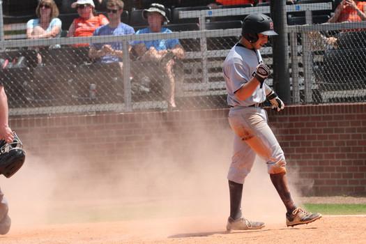 Rhodes Lynx Baseball