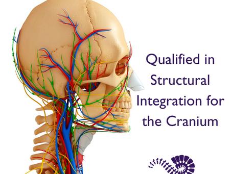 Structural Integration for the Cranium
