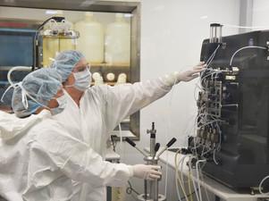 Positive outcome for Hendra antibody trial