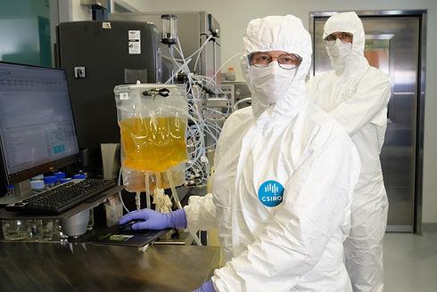 Protein_Lab_NP-233.jpg