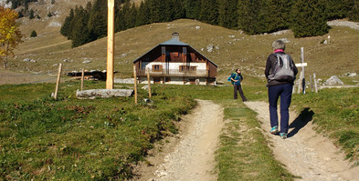 Sur les sentiers de montagne : L'alpage de La Cha.