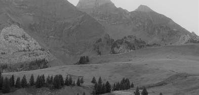 Le matin, montée douce dans l'alpage de Cenise
