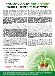 Common Cold Flu Cough Natural Remedies T
