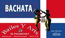Bachata Albi bailesyarts.com
