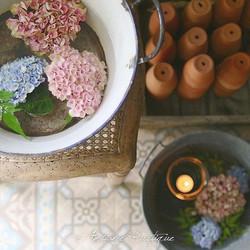 ホウロウ、メタルバケツ、テラコッタの鉢