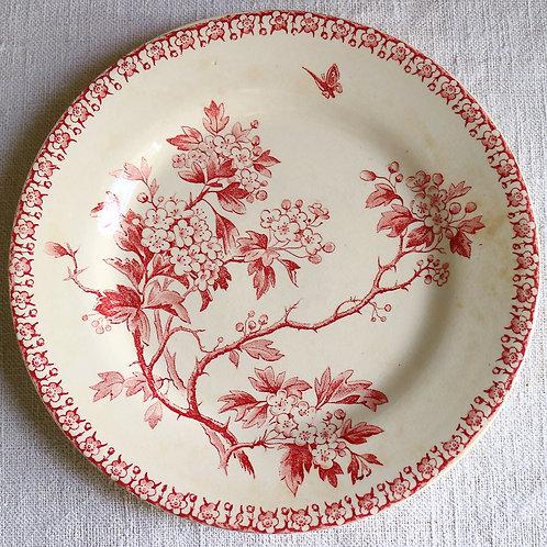 0064 Aubepine Gien ジアン  Ø 21cm平皿