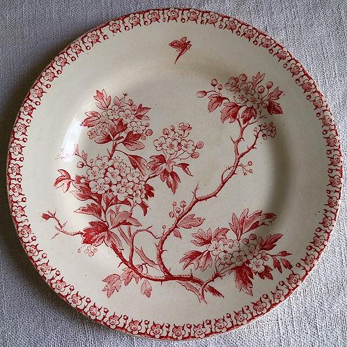 0065 Aubepine Gien ジアン Ø 21cm平皿