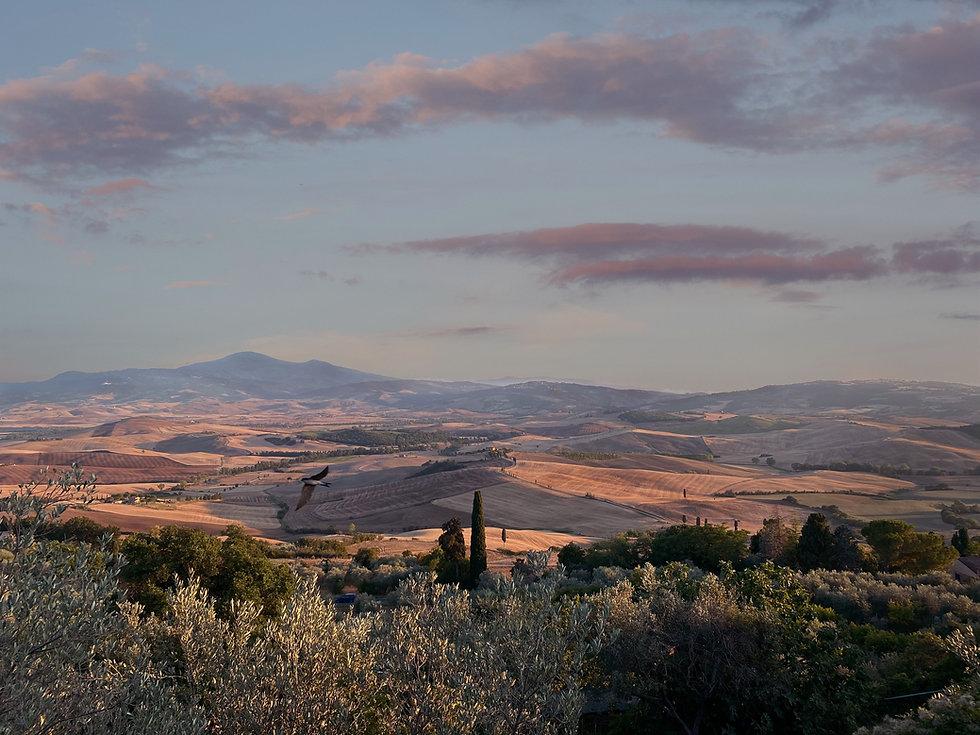 Pienza_Landscape_comp.jpg