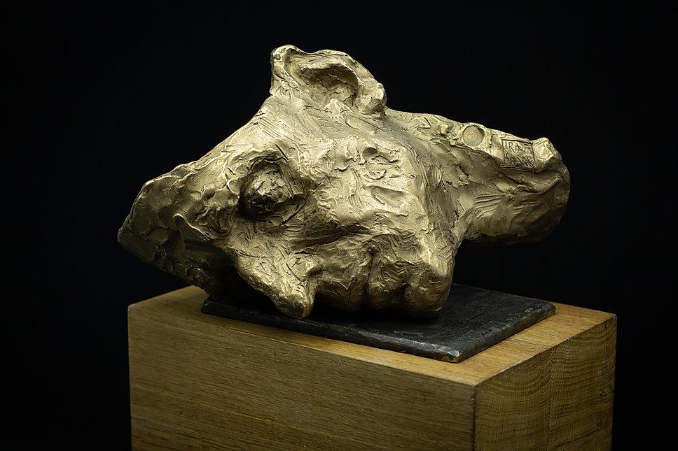 Sculpteur Irina Shark, Masque abandonné, bronze