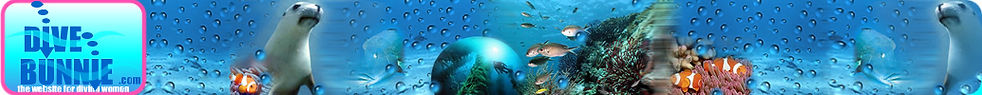 divingbannerweb.jpg