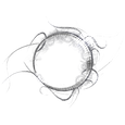 Eye Logo - 1.png