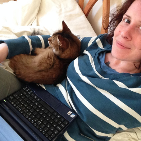 The CAT manifesto of self-publishing: Content, Advice and Tenacity