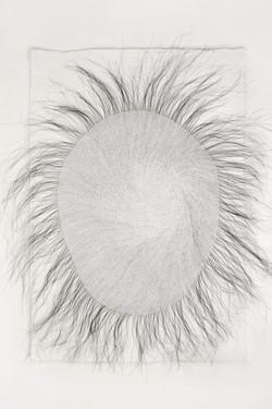 (1)Pelo-de-caballo-8