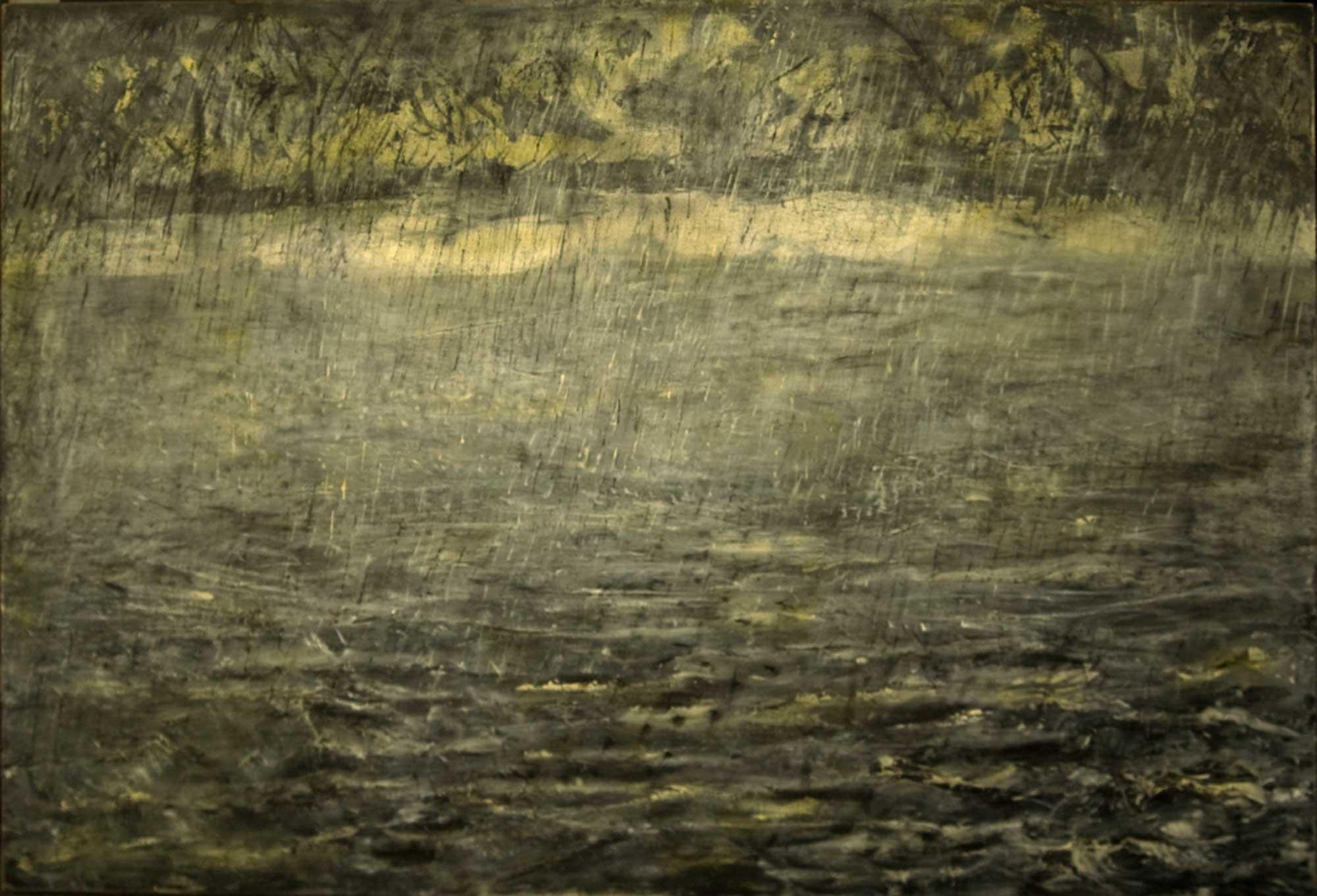 (3)Lluvia