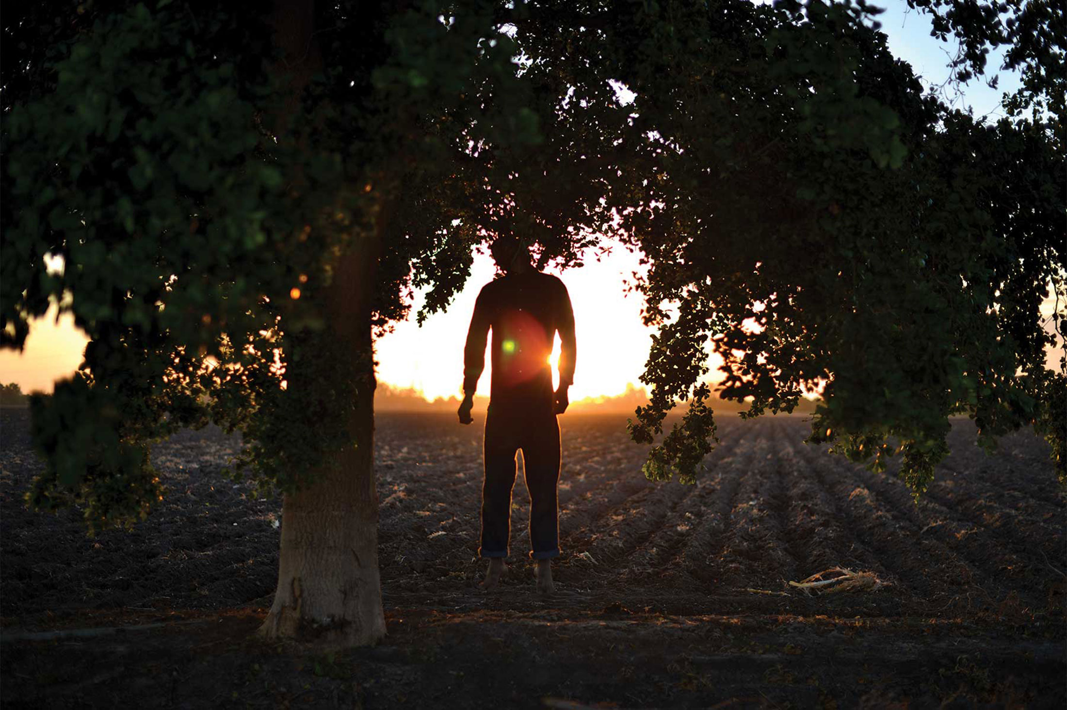 (4) El campo suicidio en Balbuena