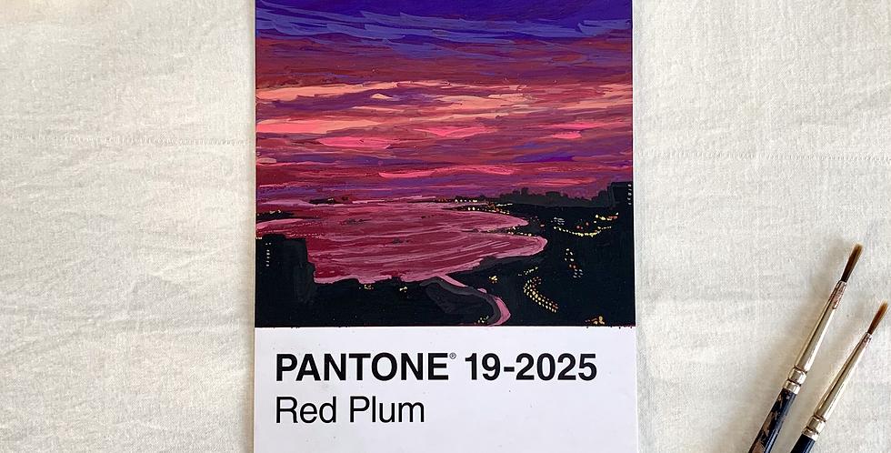PANTONE Original - Plum City