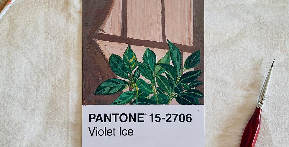 PANTONE Original - Violet Ice