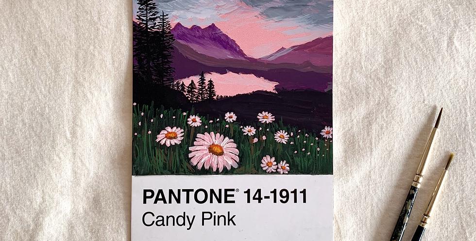 PANTONE Original - Candy Pink