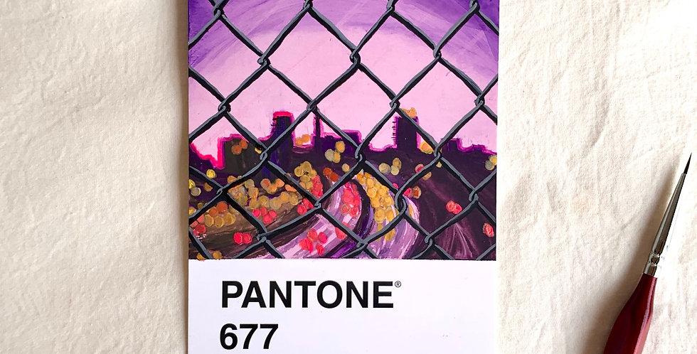 PANTONE Original - City Vibes