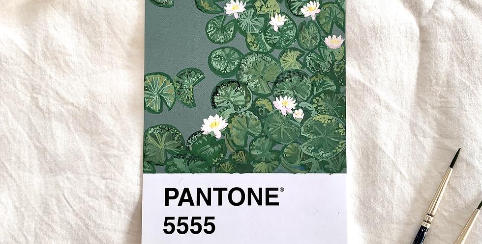 PANTONE Original - Waterlillies