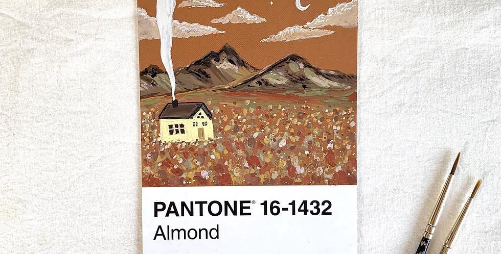 PANTONE Original - Almond