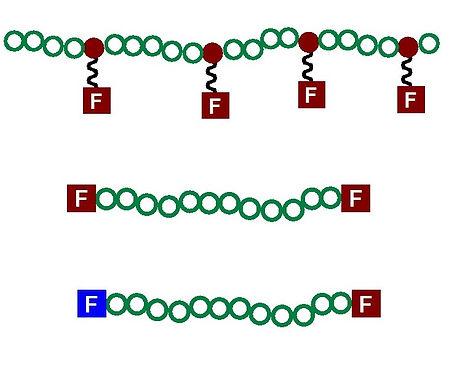 functional polymers.jpg