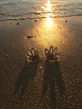 Two Hand Mudras on the beach, clear glass