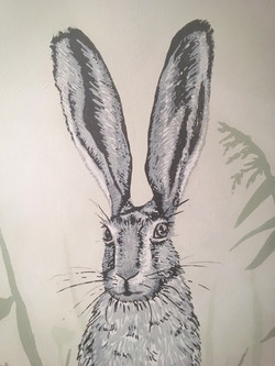 Hare Painting/Sketch Close up