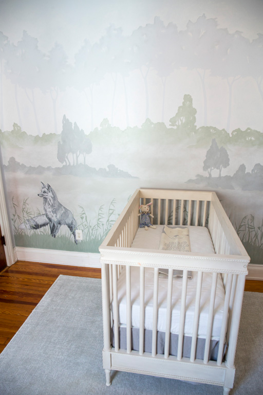 Nursery for Baby Girl or Boy