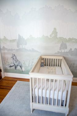 Nursery for Baby Girl or Boy