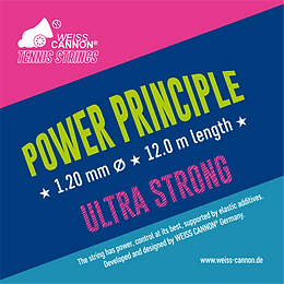 POWER_PRINCIPLE_Zeichenfläche_1.png