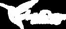 logo AniriDesign w.png
