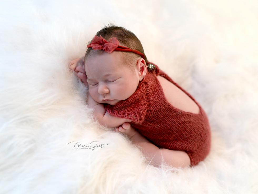 Newbornbaby Photos Lörrach